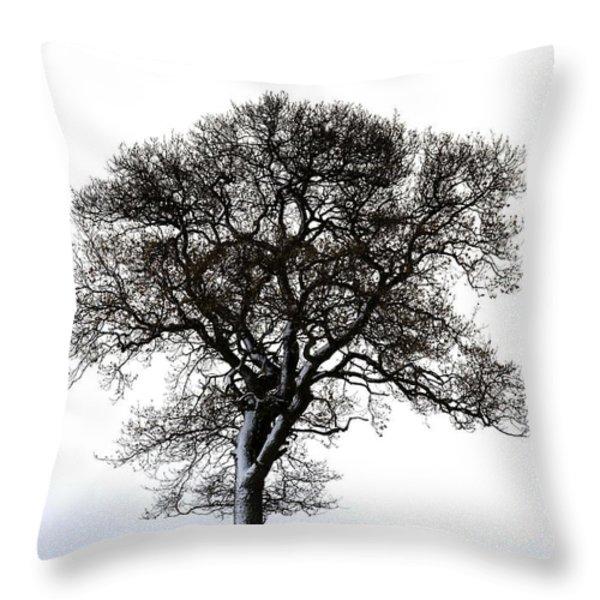Lone Tree In Field Throw Pillow by John Short