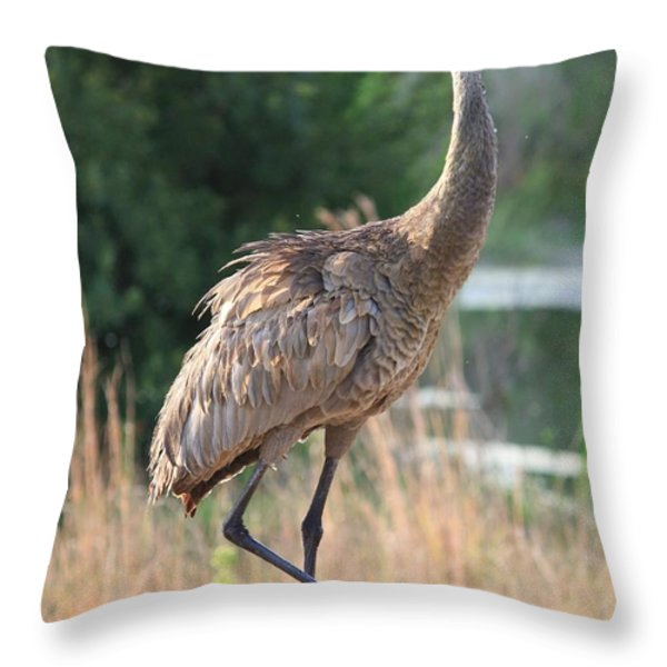 Lovely Sandhill Crane Throw Pillow by Carol Groenen