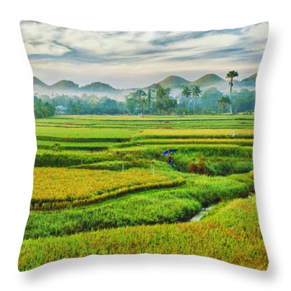 Paddy Rice Panorama Throw Pillow by MotHaiBaPhoto Prints