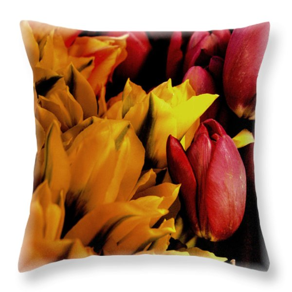 Tulips  Throw Pillow by David Patterson
