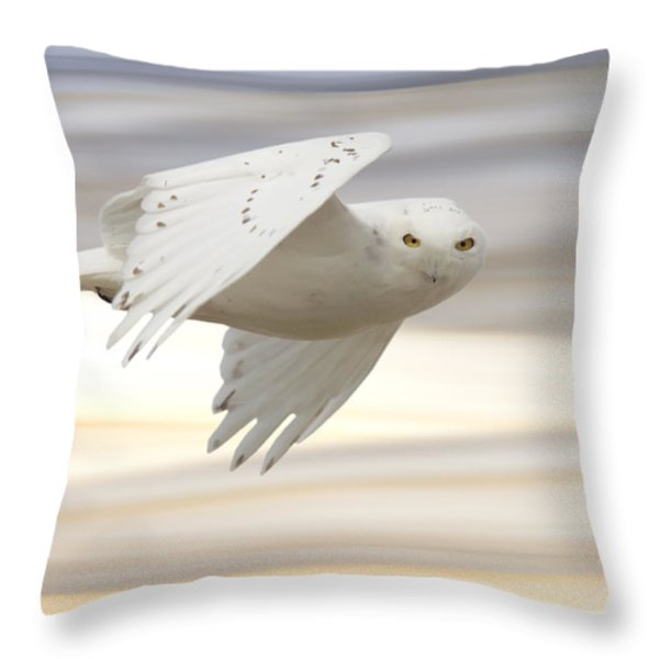 Snowy Owl In Flight Throw Pillow by Mark Duffy