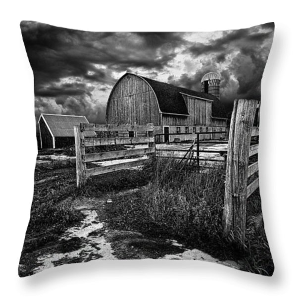 A Distant Thought Throw Pillow by Phil Koch