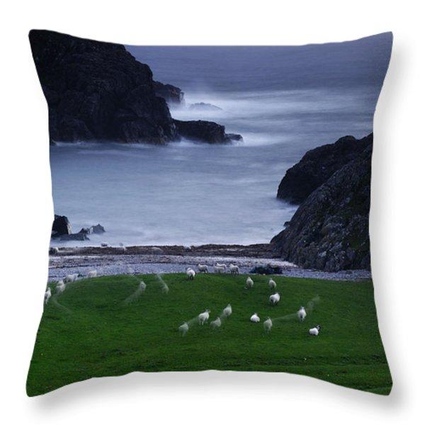A Flock Of Sheep Graze On Seaweed Throw Pillow by Jim Richardson