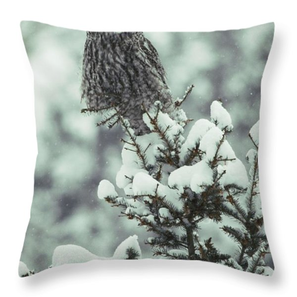 A Great Gray Owl Strix Nebulosa Perches Throw Pillow by Tom Murphy