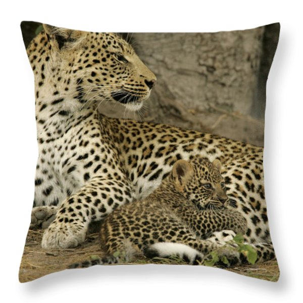 A Leopard Cub With Her Mother Throw Pillow by Beverly Joubert