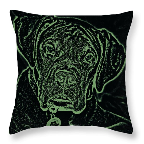 A Positive Negative Throw Pillow by DigiArt Diaries by Vicky B Fuller