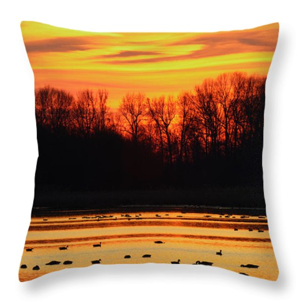 A Scene At Bombay Hook National Throw Pillow by George Grall