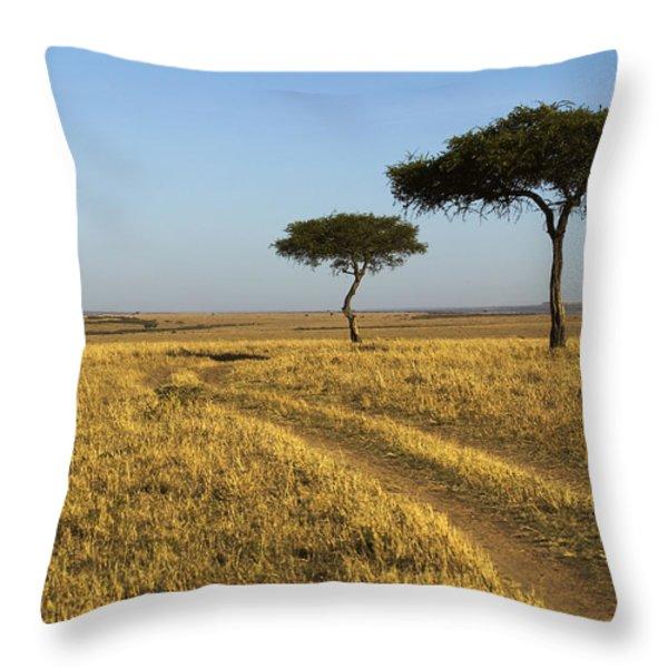 Acacia Trees In The Maasai Mara Throw Pillow by Nigel Hicks