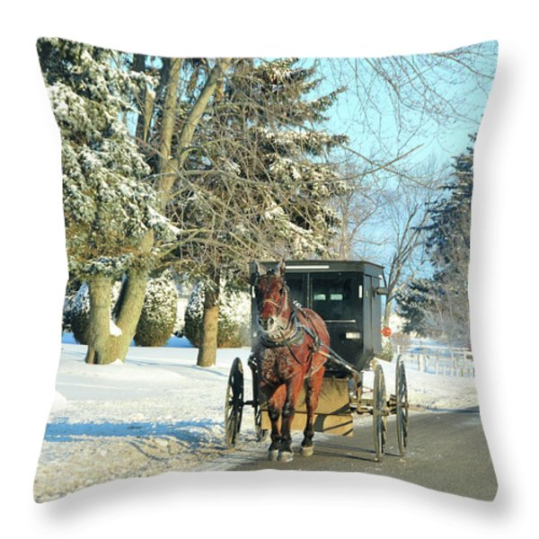 Amish Winter Throw Pillow by David Arment