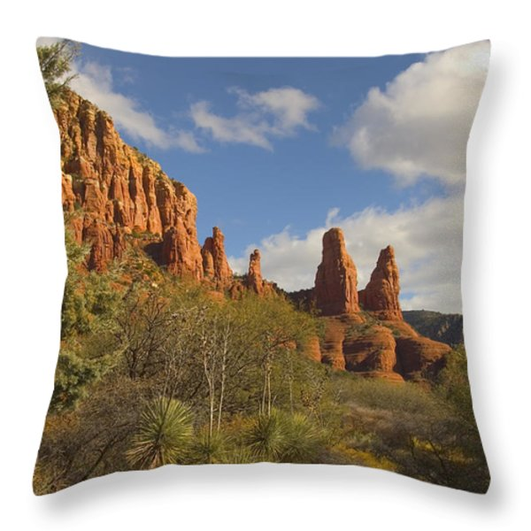 Arizona Outback 2 Throw Pillow by Mike McGlothlen