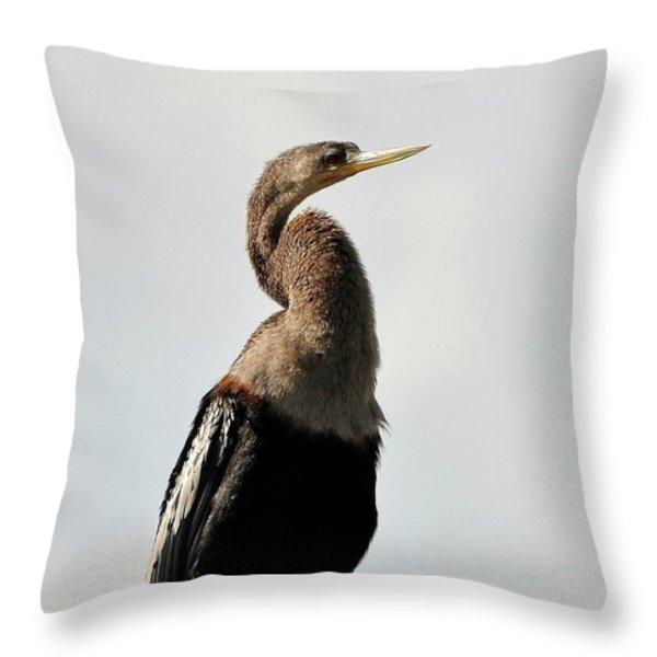 Awesome Anhinga Throw Pillow by Al Powell Photography USA