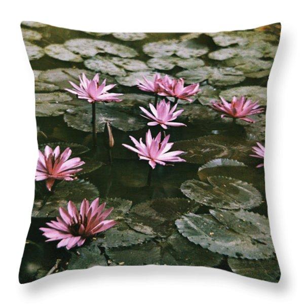 Beautiful Pink Lotus Water Lilies Bloom Throw Pillow by W. Robert Moore