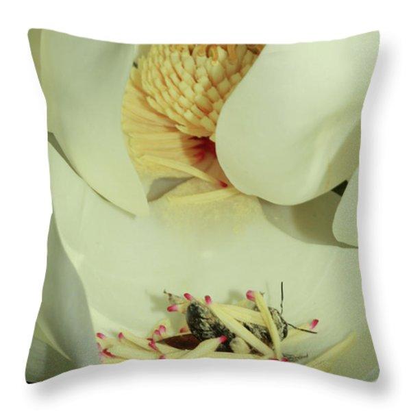 Bee Pollen Overdose Throw Pillow by Deborah Benoit