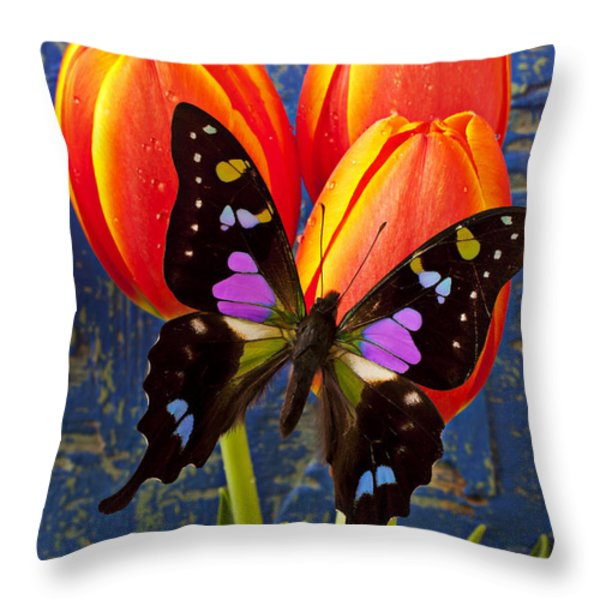 Black And Pink Butterfly Throw Pillow by Garry Gay