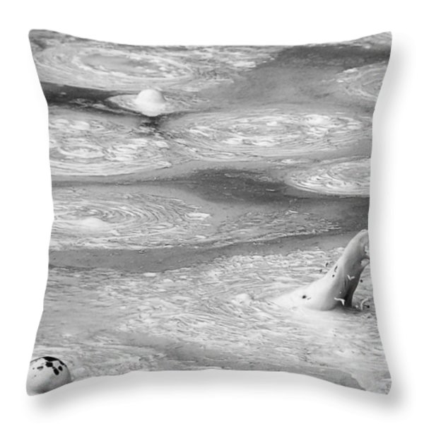 Boiling Mudpot - Artist' Paint Pots Yellowstone National Park Wy Usa Throw Pillow by Christine Till