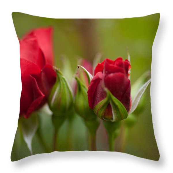 Bud Bloom Blossom Throw Pillow by Mike Reid