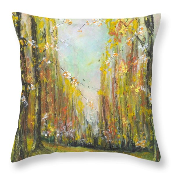 Buffalo River National Park Study 3 Throw Pillow by Robin Miller-Bookhout