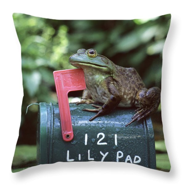 Bullfrog Throw Pillow by Kenneth H Thomas and Photo Researchers