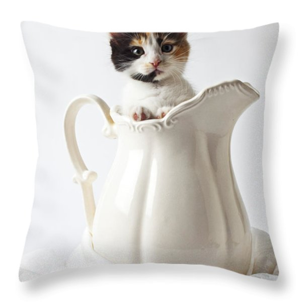Calico Kitten In White Pitcher Throw Pillow by Garry Gay