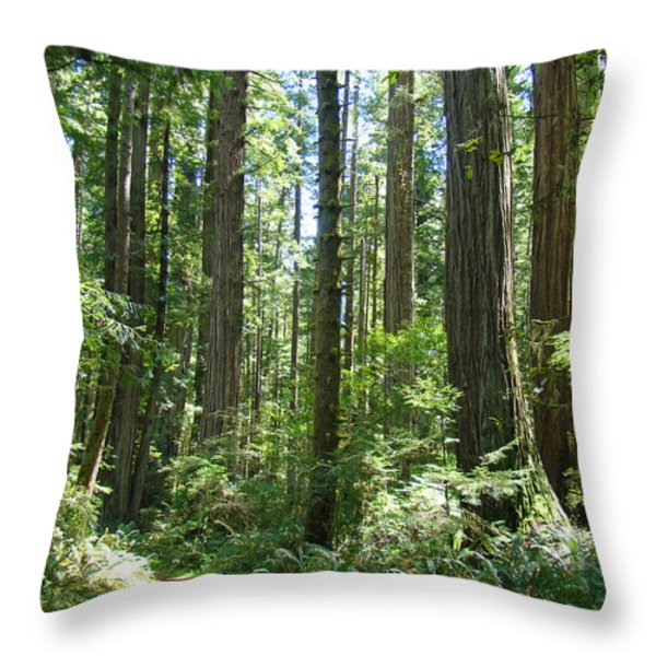 California Redwood Trees Forest Art Prints Throw Pillow by Baslee Troutman
