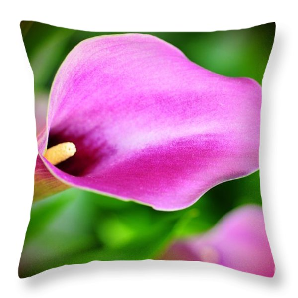 Calla Lilly Throw Pillow by Kathleen Struckle