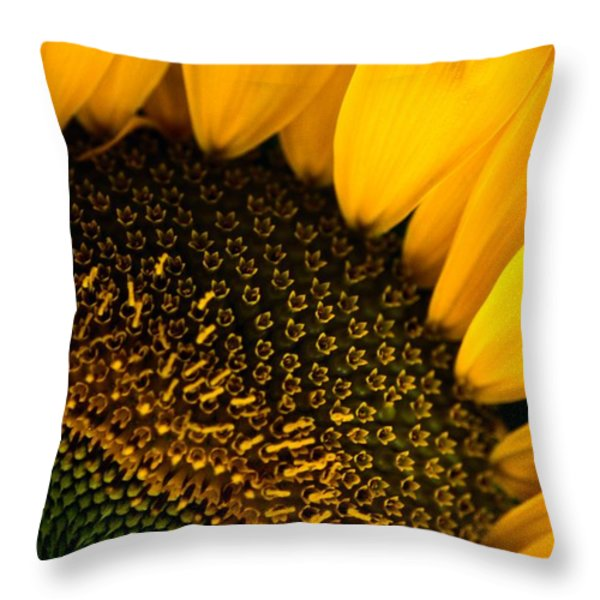 Close-up Of A Sunflower Throw Pillow by Todd Gipstein