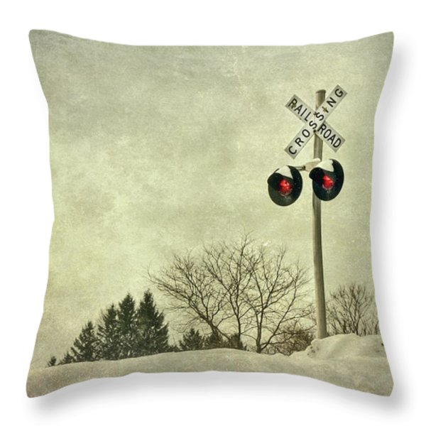 Crossing Over Throw Pillow by Evelina Kremsdorf