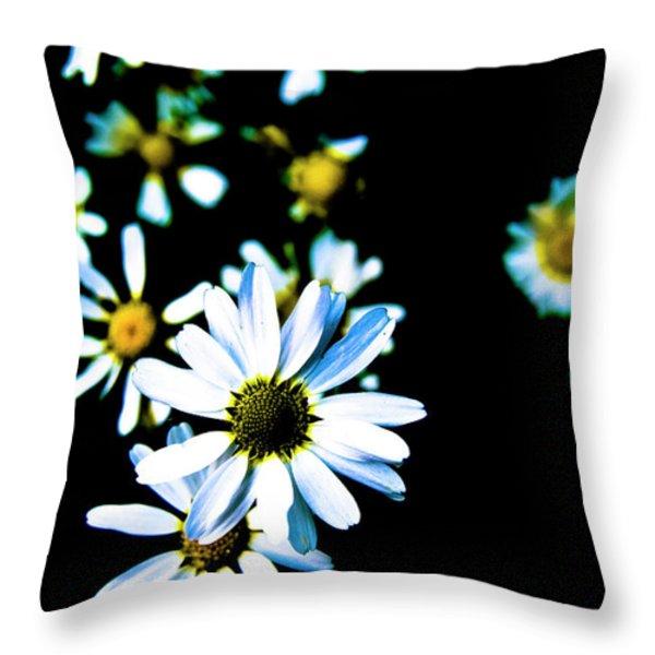 Daisies Throw Pillow by Grebo Gray