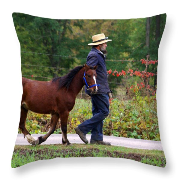 Down A Country Road Throw Pillow by Linda Mishler