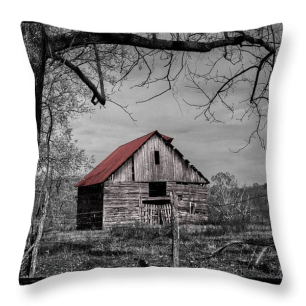 Dressed In Red Throw Pillow by Debra and Dave Vanderlaan