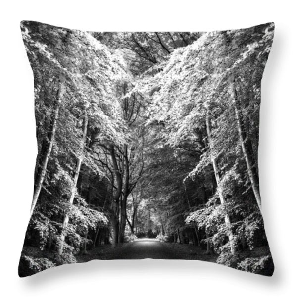 Fantasy Land Throw Pillow by Svetlana Sewell