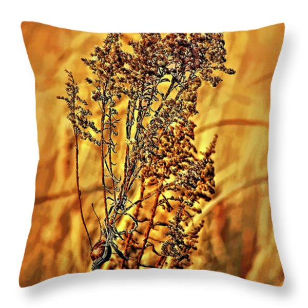 Field Frolic Throw Pillow by Steve Harrington