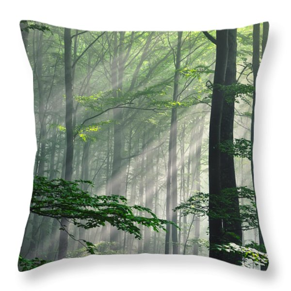 Fleeting Beams Throw Pillow by Evgeni Dinev