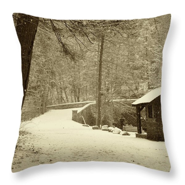 Forbidden Drive In Winter Throw Pillow by Bill Cannon