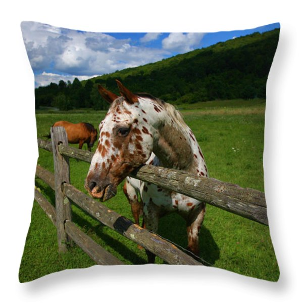Freckles Throw Pillow by Karol  Livote