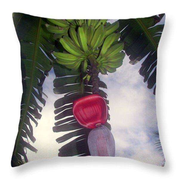 Fruitful Beauty Throw Pillow by Karen Wiles