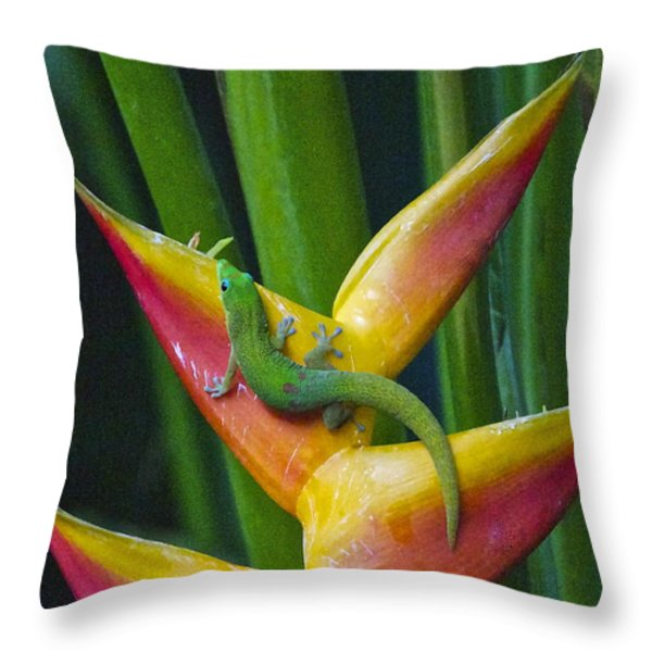 Gold Dust Day Gecko Throw Pillow by Sean Griffin