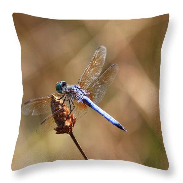 Golden Wings Throw Pillow by Carol Groenen