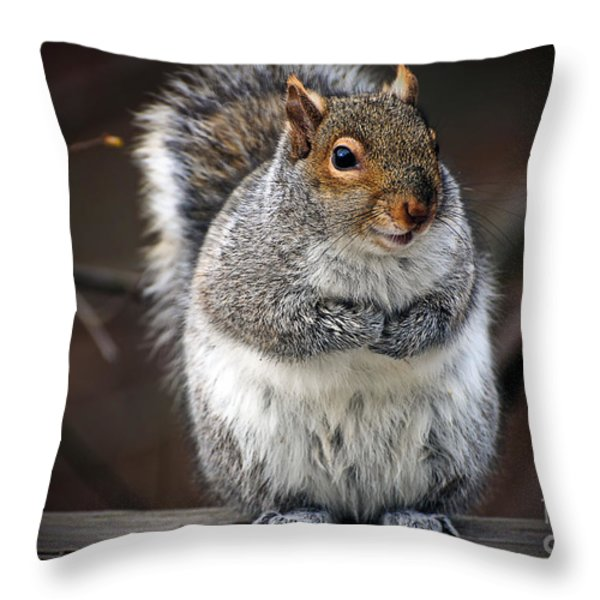 Got Doughnuts Throw Pillow by Lois Bryan