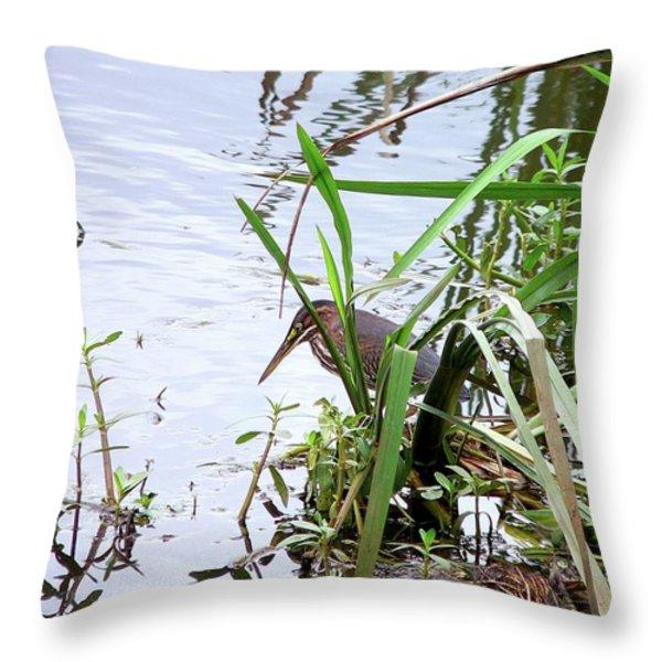 Green Heron Throw Pillow by Al Powell Photography USA