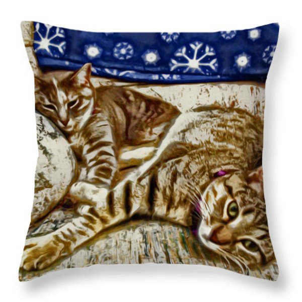Happy Together Throw Pillow by David G Paul