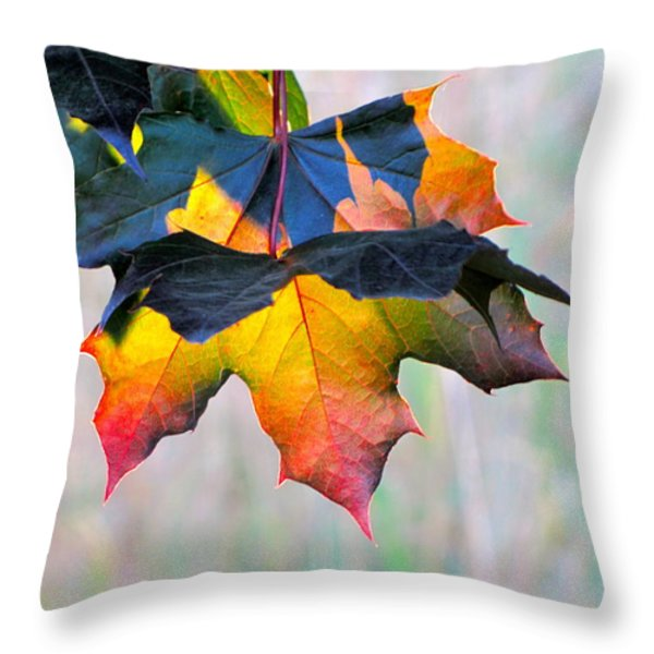 Harbinger Of Autumn Throw Pillow by Sean Griffin