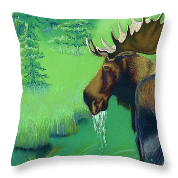 Highlands Throw Pillow by Tracy L Teeter