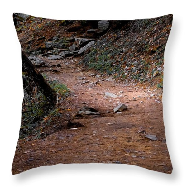 Hiking Trail To Abrams Falls Throw Pillow by DigiArt Diaries by Vicky B Fuller