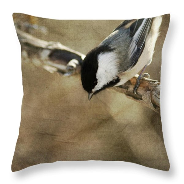 Inquisitive Throw Pillow by Reflective Moment Photography And Digital Art Images