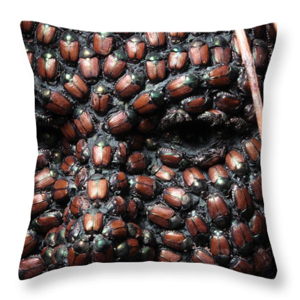 Jeweled Throw Pillow by Adam Long