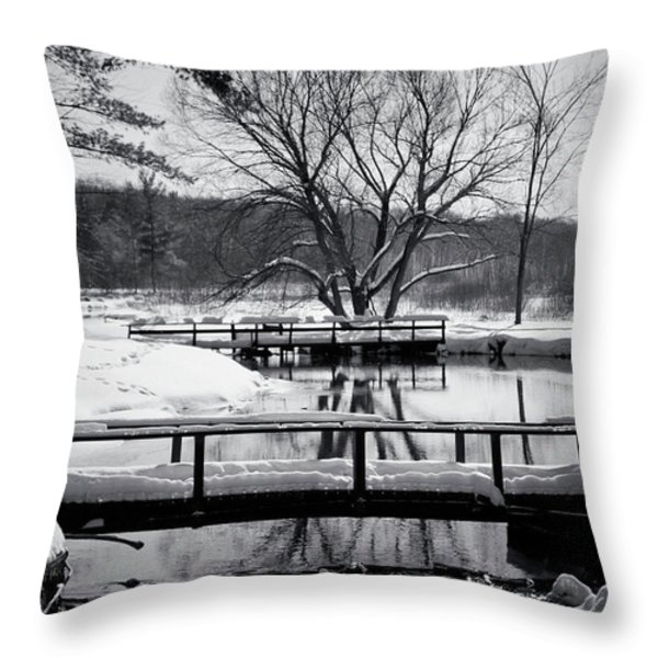 Knapp Creek At Seven Pines Lodge Throw Pillow by Cynthia Dickinson