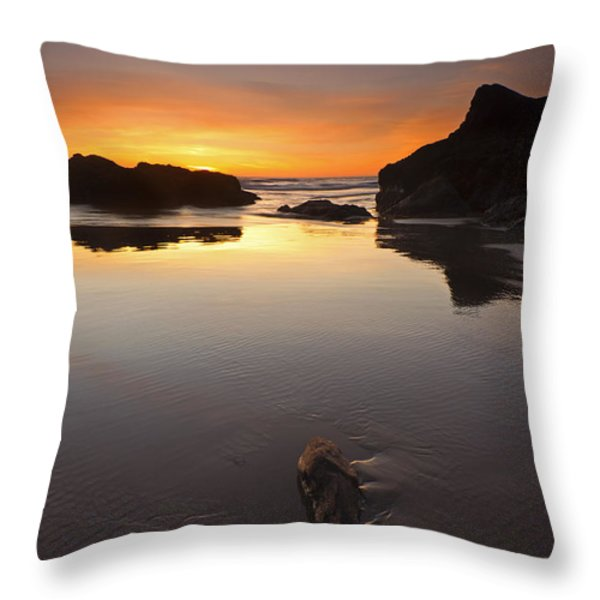 Left By The Tides Throw Pillow by Mike  Dawson
