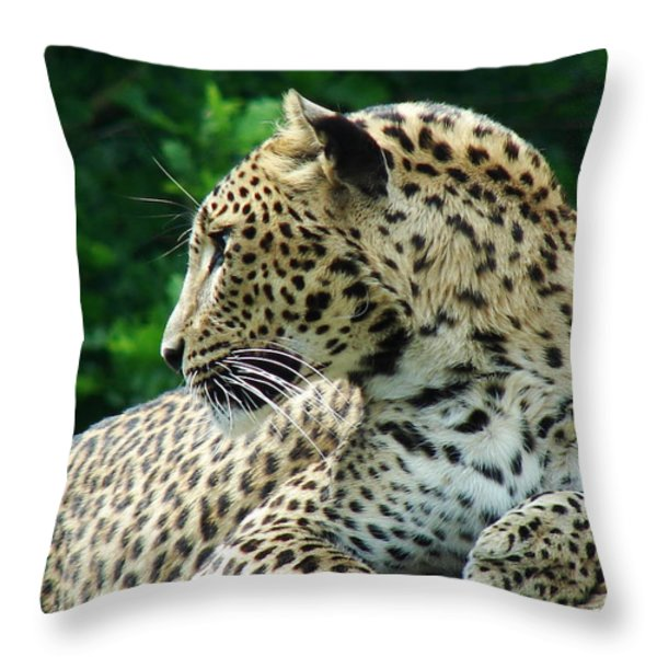 Leopard Throw Pillow by Nicola Butt