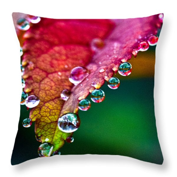 Liquid Beads Throw Pillow by Christopher Holmes
